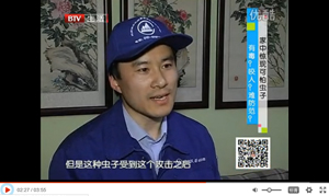 BTV《生活2015》东方汉诺灭蛐螋视频